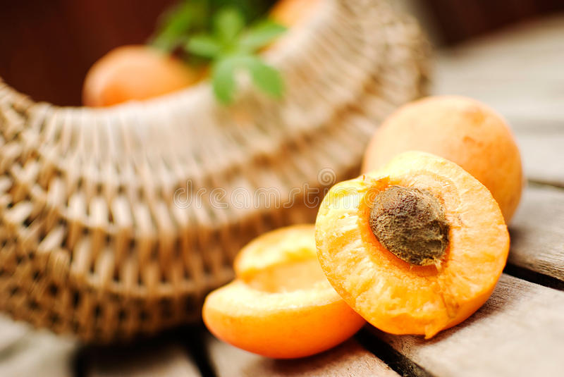 Download Apricots stock photo. Image of nutrition, juicy, life - 25922712