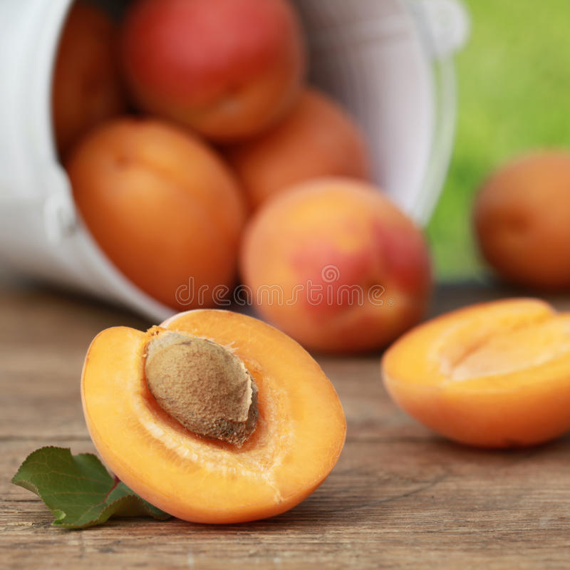 Download Apricots Stock Images - Image: 26576434