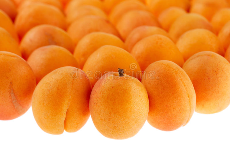 Apricots Background Partly Isolated On White Royalty Free Stock Image