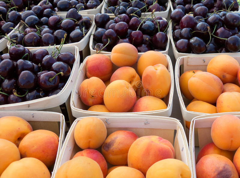 Apricots and Bing cherries stock photos