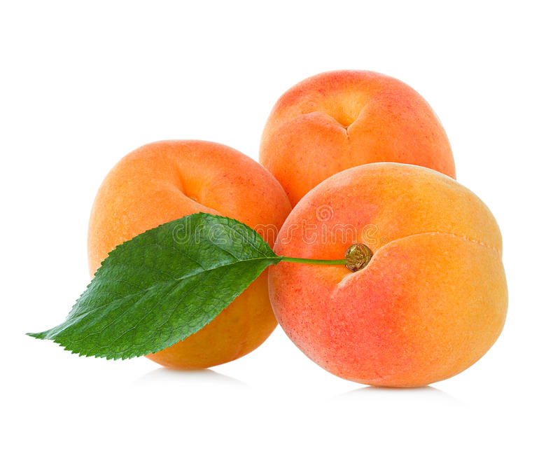 Apricots with leaf royalty free stock photo