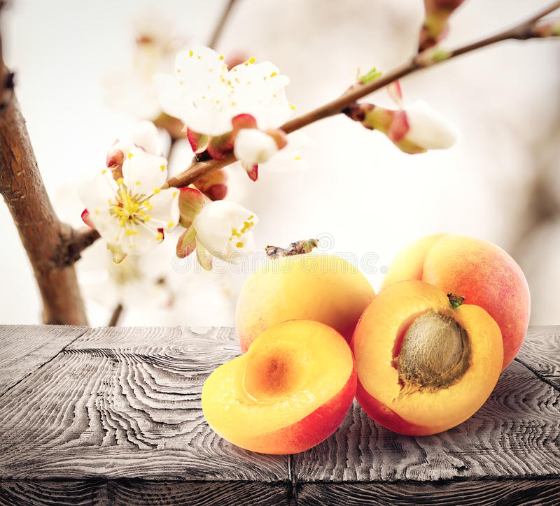 Apricots lie on wooden table stock photography