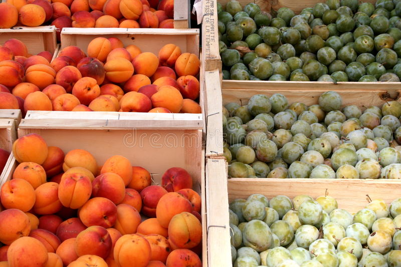 Apricots and plums at the market stock images