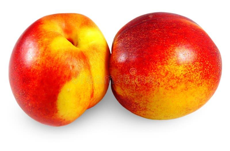 Download Apricots stock photo. Image of orange, fresh, nature - 30772650