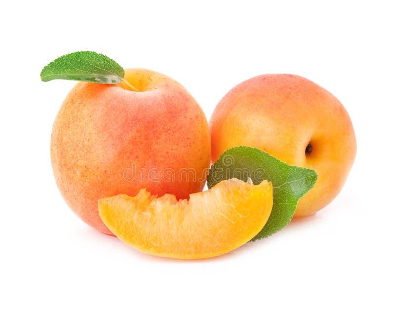 Aprikors arkivbilder
