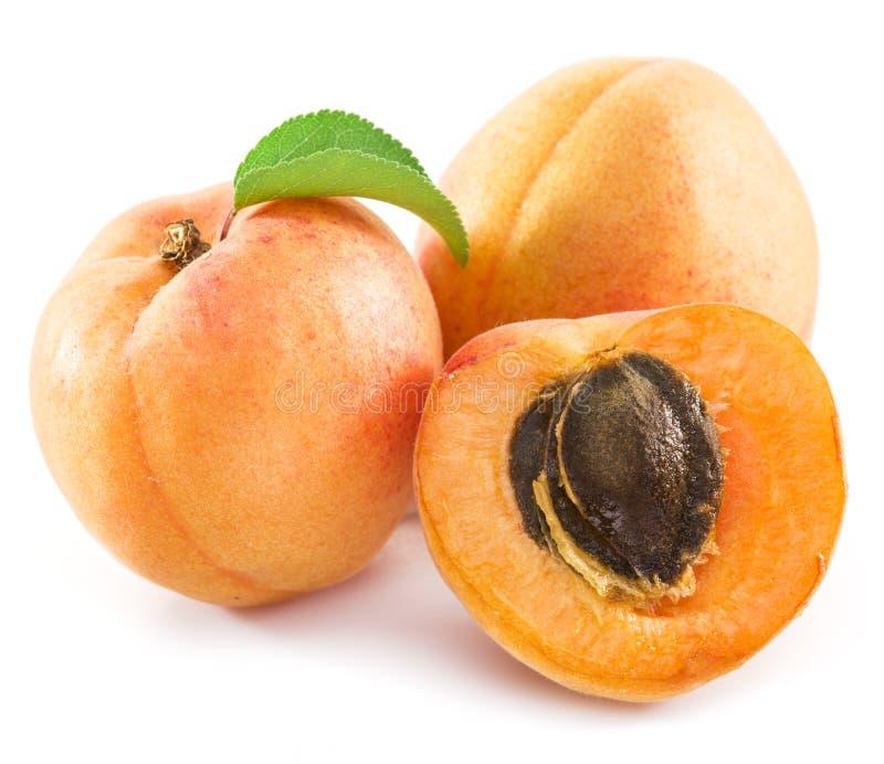 Aprikors och dess tvärsnitt på den vita bakgrunden royaltyfri bild
