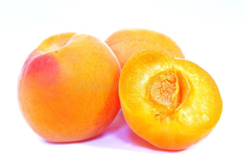 aprikos skjuten studio royaltyfri fotografi