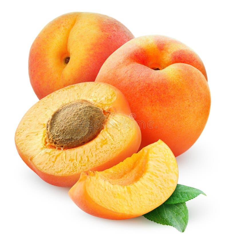 Aprikosar arkivbild