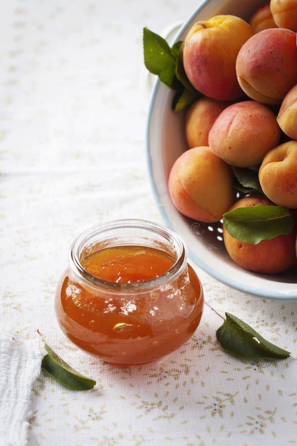 Aprikosdriftstopp med nya aprikors i bakgrunden fotografering för bildbyråer