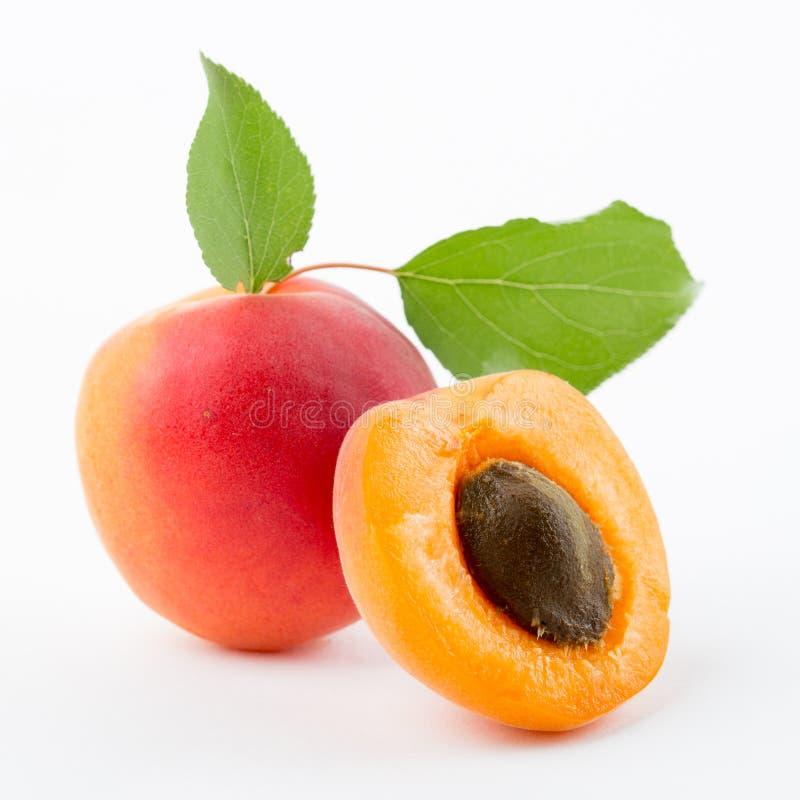Aprikose mit Blättern stockfoto
