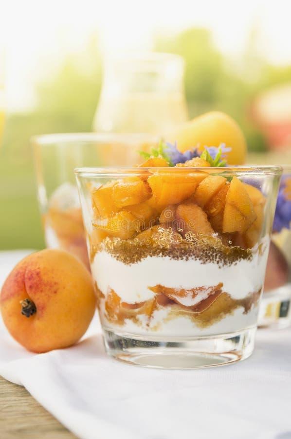 Aprikosefterrätt med yoghurt royaltyfria foton