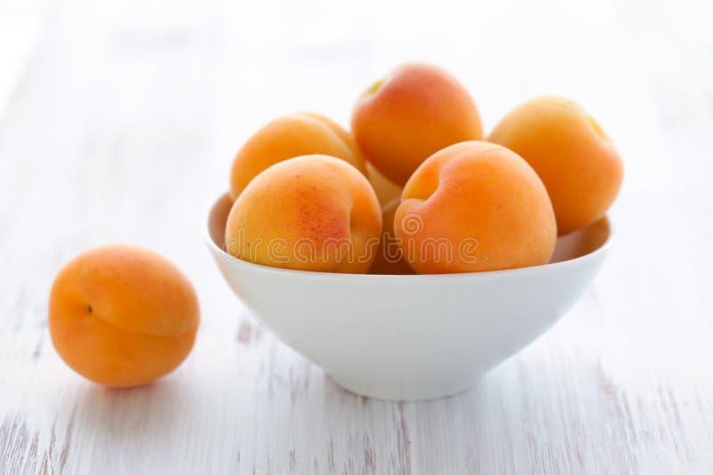 Aprikosen stockfotografie