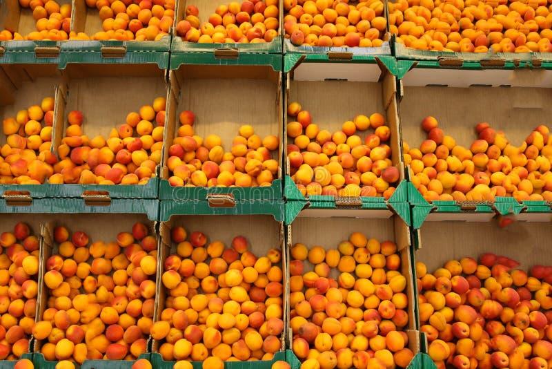 Aprikosen auf dem Markt stockbild