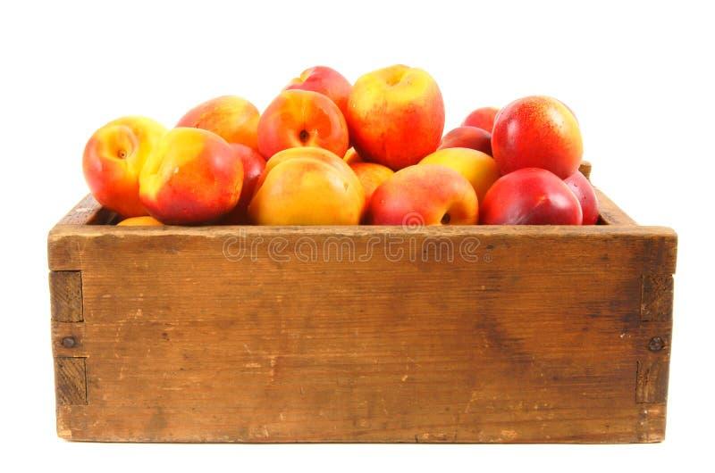 Aprikosen in einem alten Kasten stockfotos