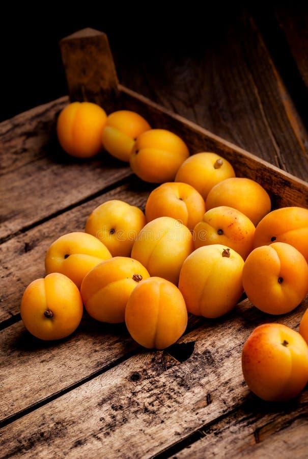 Aprikosen in einer rustikalen Holzkiste stockbild