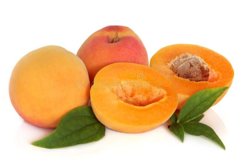 Aprikosen-Frucht stockbilder