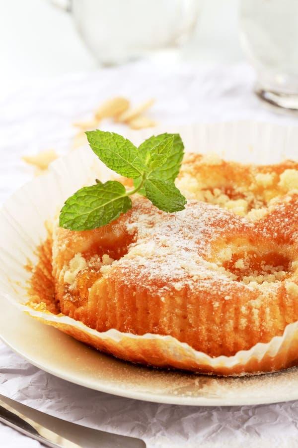Aprikosen-Kuchen lizenzfreie stockbilder