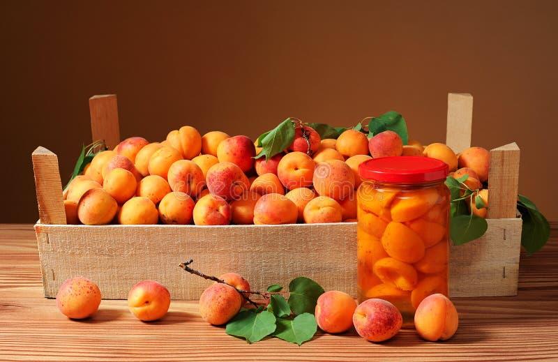 Aprikosen und Kompott in einem Glas Glas lizenzfreies stockfoto