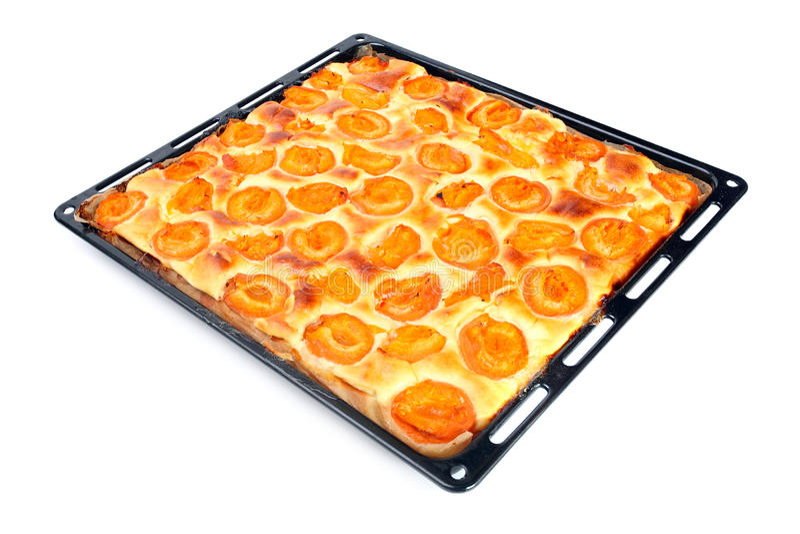 Aprikosenkuchen. stockbild