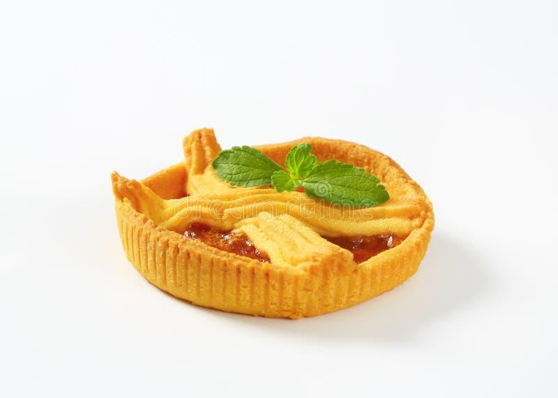 Aprikosenkuchen mit Gitter stockfotografie