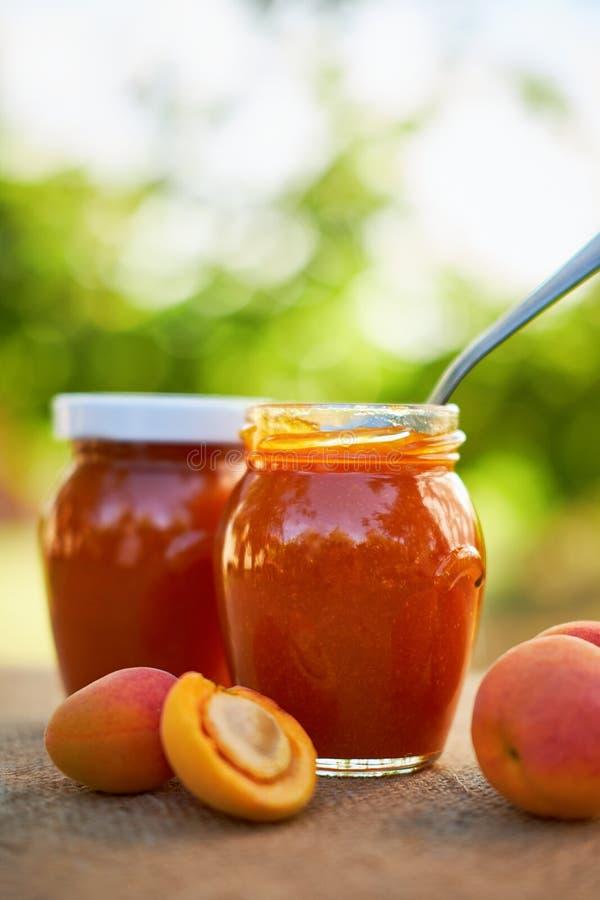 Aprikosenmarmelade in den Glasgefäßen mit frischer Frucht lizenzfreie stockfotografie
