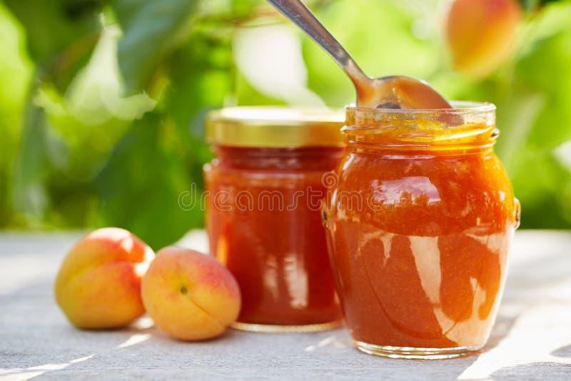 Aprikosenmarmelade in den Glasgefäßen mit frischer Frucht lizenzfreies stockfoto