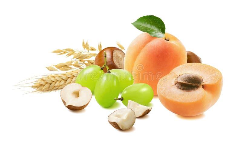Aprikoser, druvor, hasselnötter, havre isolerade på vit bakgrund Frukt- och nötset för müsli och granola arkivfoto