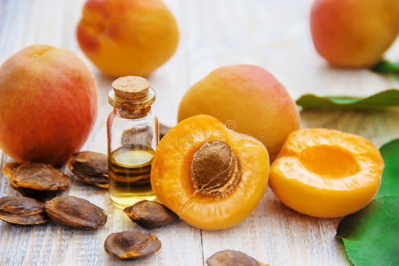 Aprikosolja i en liten krus Selektivt fokusera arkivbilder