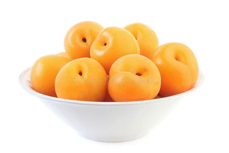 aprikosplatta arkivfoton