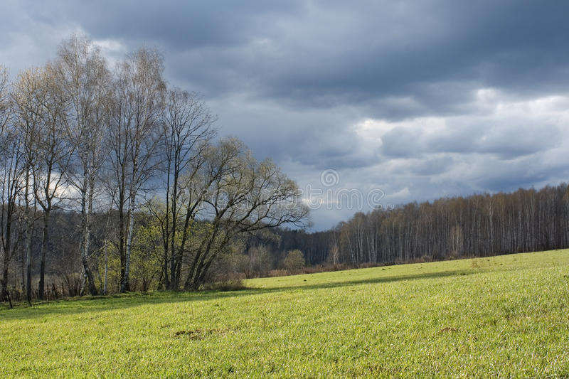 Download April stock image. Image of herbage, march, clouds, overcast - 13264175