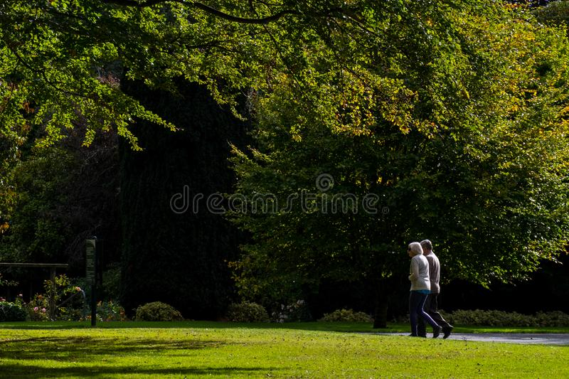 \'2018, April 16 - Invercargill, New Zealand, The elderly couple doing exercise together in the park in the morning. I. \'2018, April 16 - Invercargill, New stock image