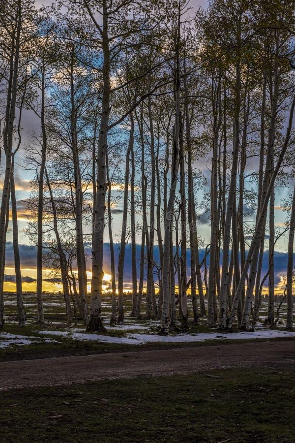 27 APRIL, 2017 - RIDGWAY, COLORADO - mening van Espen bij zonsondergang, Hastings Colorado, Sneeuw stock afbeelding