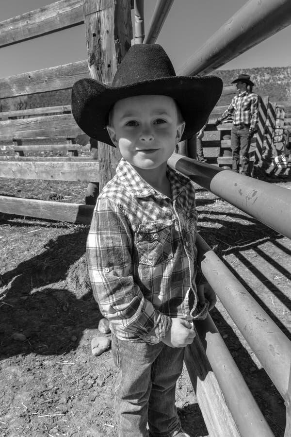 APRIL 22, 2017, RIDGWAY COLORADO: Ung cowboy under nötkreatur som brännmärker på den hundraårs- ranchen, Ridgway, Colorado - en r arkivfoton