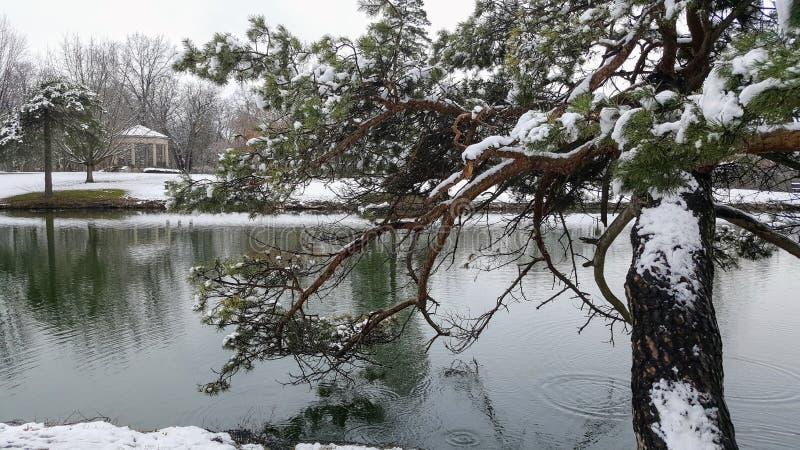 April Snow: schneebedeckter Teich lizenzfreie stockbilder
