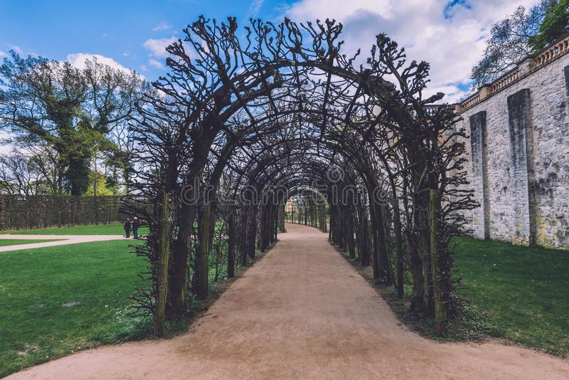 Ivy Archway on Belvedere Palace in Potsdam stock image