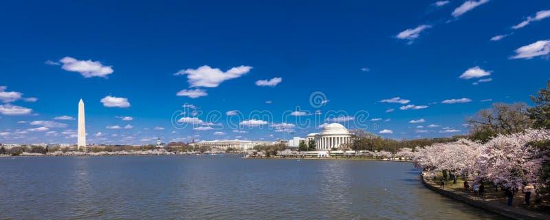 APRIL 8, 2018 - Washington D C - Jefferson Memorial & Washington Monument, tidvattens- handfat, Washington D C Vit tillstånd arkivfoto