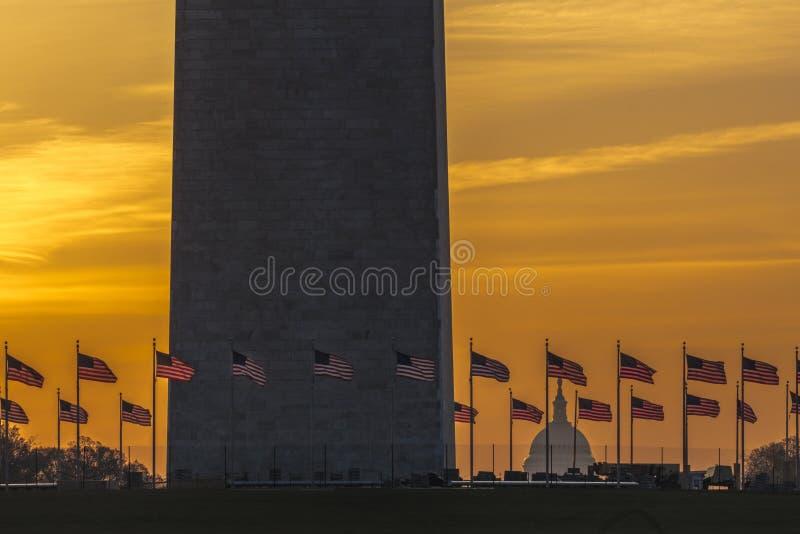 8 APRILE 2018 WASHINGTON D C - Bandiere degli Stati Uniti con il punto di vista potato del Campidoglio e di Washington Monument d fotografia stock