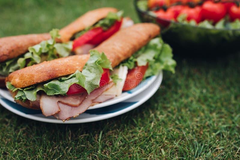 Aptitretande smörgåsar på plattan på gräs skivat kallt kött och bröd tjänade som på plattan på grönt sommargräs royaltyfri foto