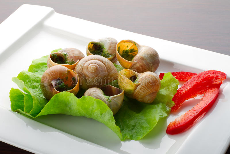 Aptitretare av snails i vitlöksmör
