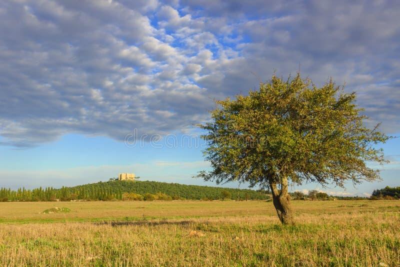 Apulia landskap: Alta Murgia National Park I bakgrunden Castel del Monte - ITALY& x28; Andria& x29; - arkivfoto