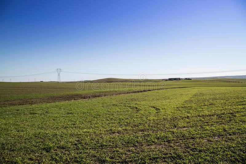 Apulian andscape royalty free stock photo