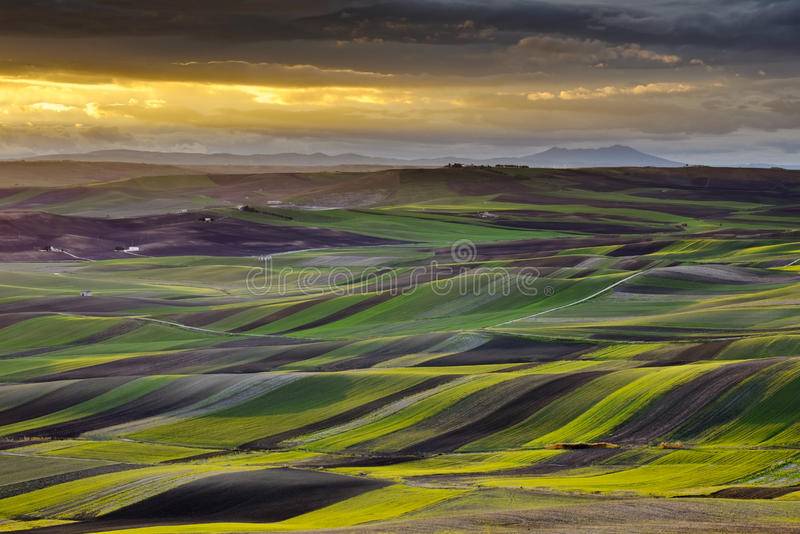 Apulian landscape at sunset, Apulia - Southern Ita royalty free stock images