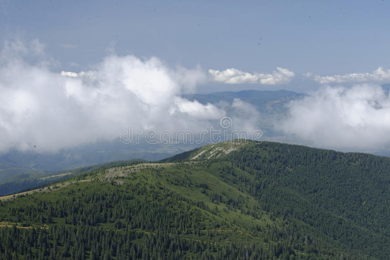 Apuseni mountains. Scenic view of Muntele Mare, Big Mountain, in the Apuseni mountains, Western Carpathians, Romania stock images