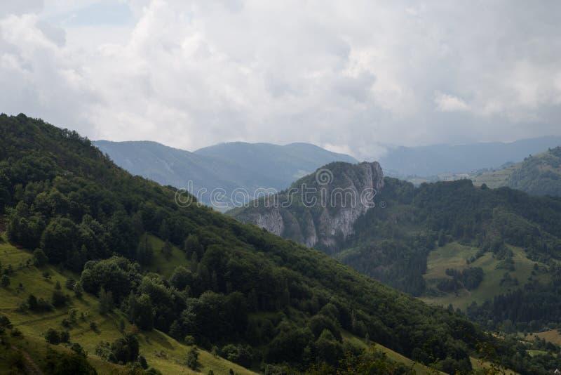 Apusenibergen Roemenië stock foto's