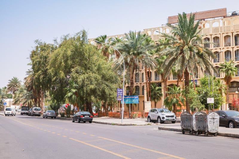 Aqaba med palmträd på den soliga sommardagen royaltyfria bilder