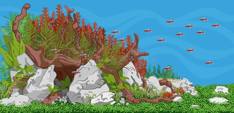 Aquário Aquário plantado com peixes ilustração do vetor