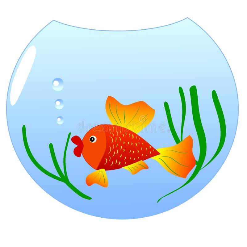 Download Aquário com goldfish ilustração do vetor. Ilustração de goldfish - 12807706