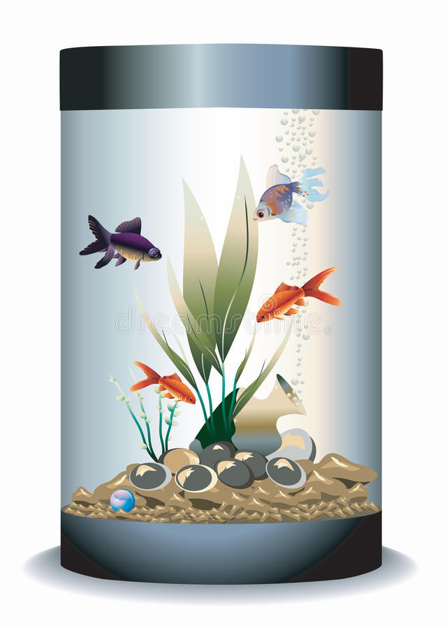 Aquário com peixes ilustração do vetor