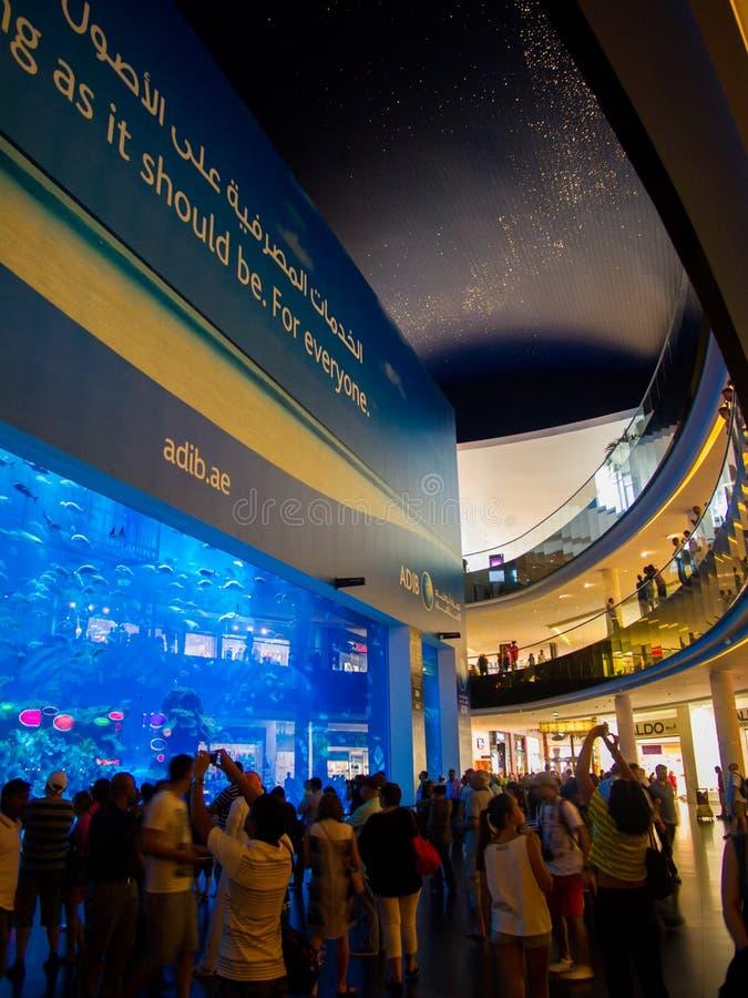 Aquário da alameda de Dubai foto de stock royalty free