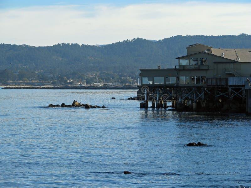 Aquário da baía de Monterey fotos de stock